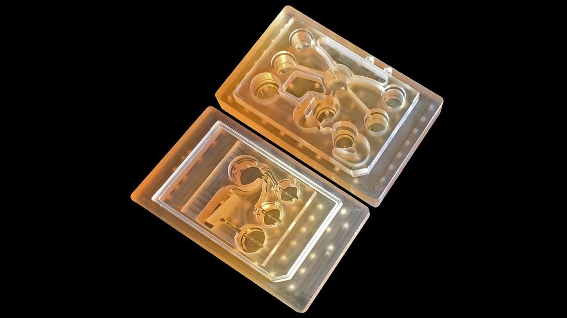A 10-organ body-on-a-chip
