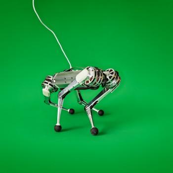 Photo of the Mini Cheetah robot