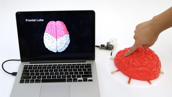 A cheap simple way to make anything a touch pad mit technology review electrick can turn all kinds of objects like this molded jell o brain into touch pads gumiabroncs Choice Image