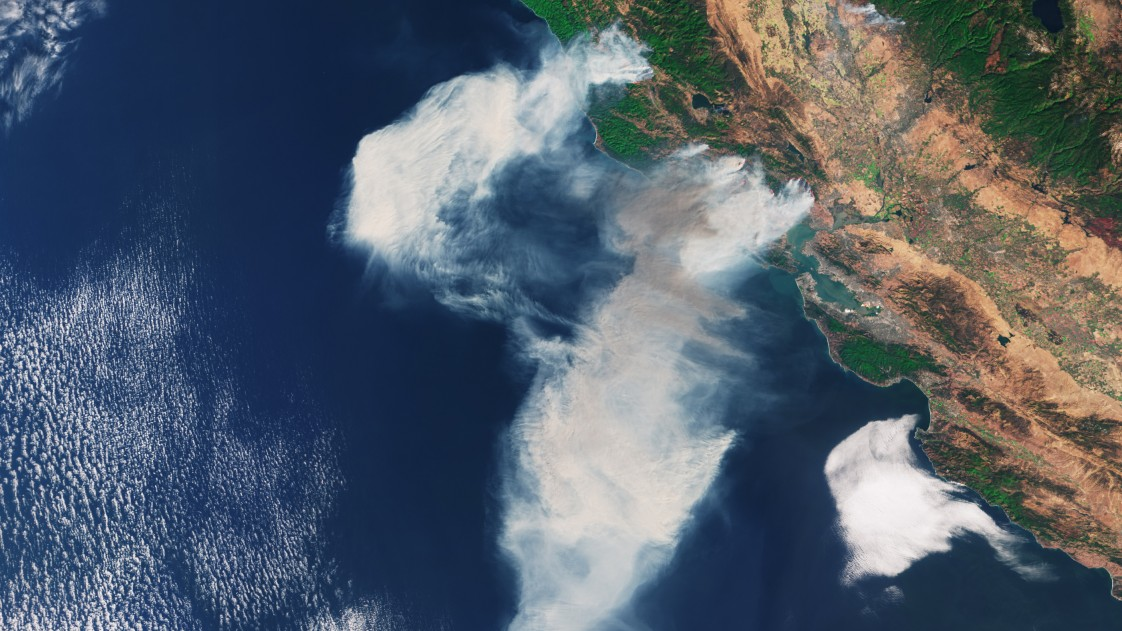 Satellite image of the coast of California, with several large smoke blooms from fires