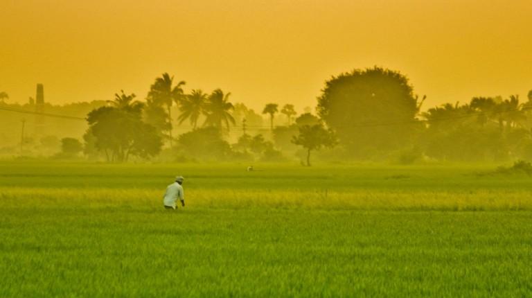 India heat waves