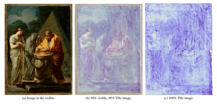 Terahertz Image Reveals Goya's Hidden Signature in Old Master Painting