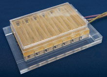 """liver component of DARPA's """"physiome on a chip"""" project"""