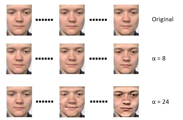 Facial recognition lie