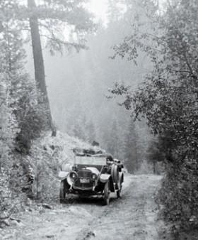 car in woods