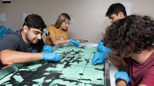 Photo of students working