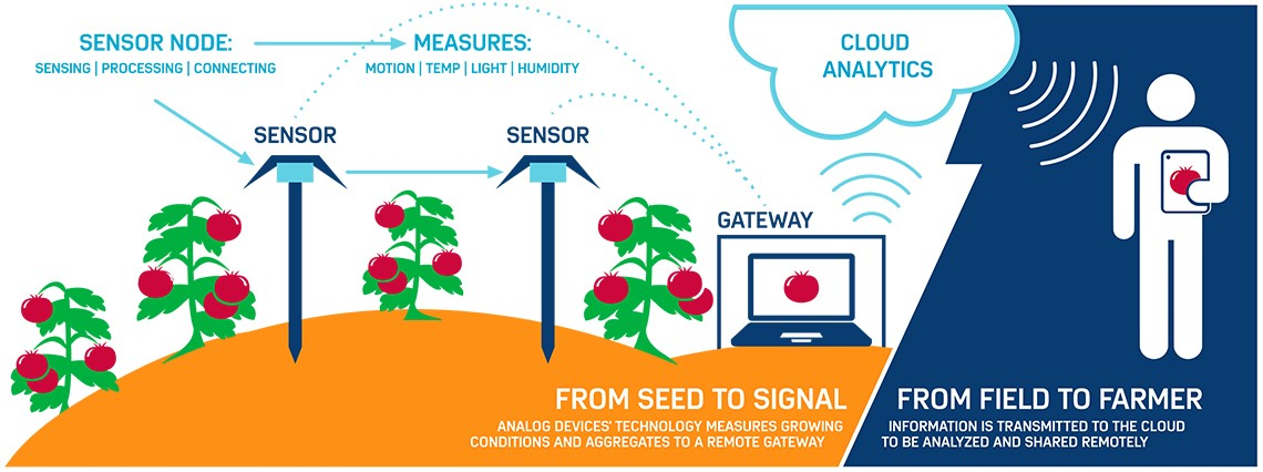 Iot The Internet Of Tomatoes Mit Technology Review