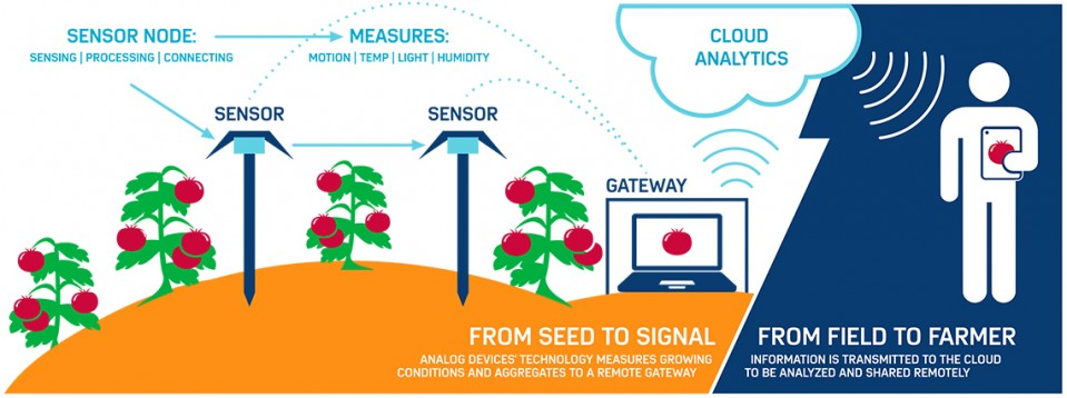 IoT: The Internet of Tomatoes - MIT Technology Review