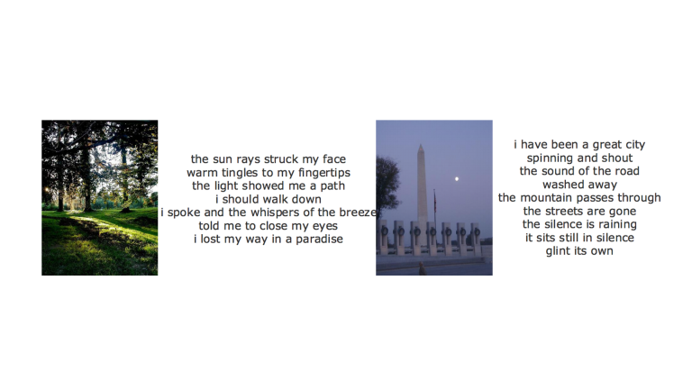 two computer-generated poems and their associated images