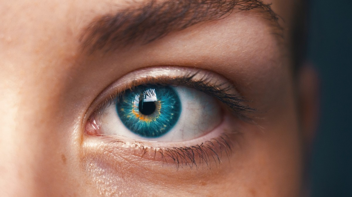 AI can spot your eye disease with 94.5 percent accuracy