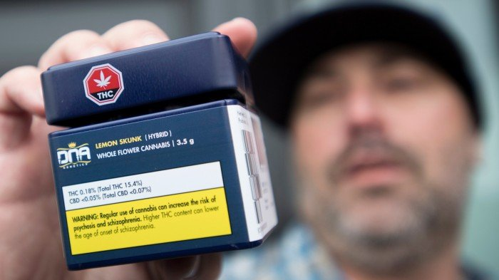 Image of a man holding medical marijuana that was purchased in Canada