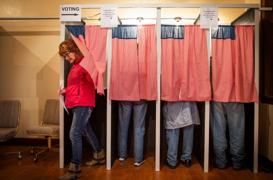 An image of voters lined up at voting booths