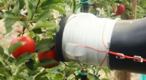 Photo of apple-picking robot