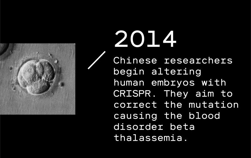 Timeline entry 2014: Chinese researchers begin altering human embryos with CRISPR. They aim to correct the mutation causing the blood disorder beta thalassemia.