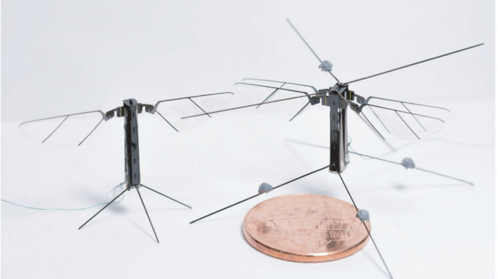 robotic bee