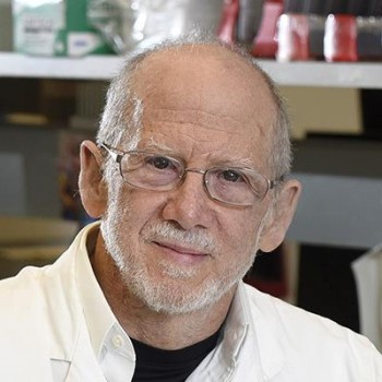 Bert Vogelstein