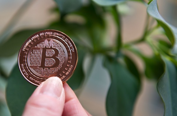 Bitcoin Has Avoided Tearing Itself Apart (for Now)
