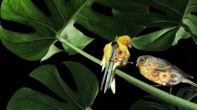 mechanical canaries illustration