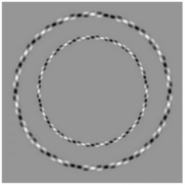 Image of concentric circle optical illusion