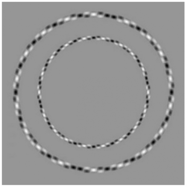 Neural networks don't understand what optical illusions