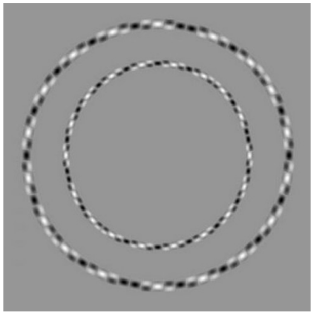 Image of concentric circle optical illusion