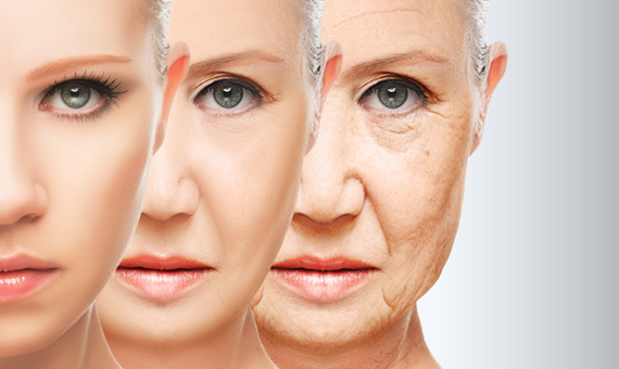 Undoing Aging with Molecular and Cellular Damage Repair