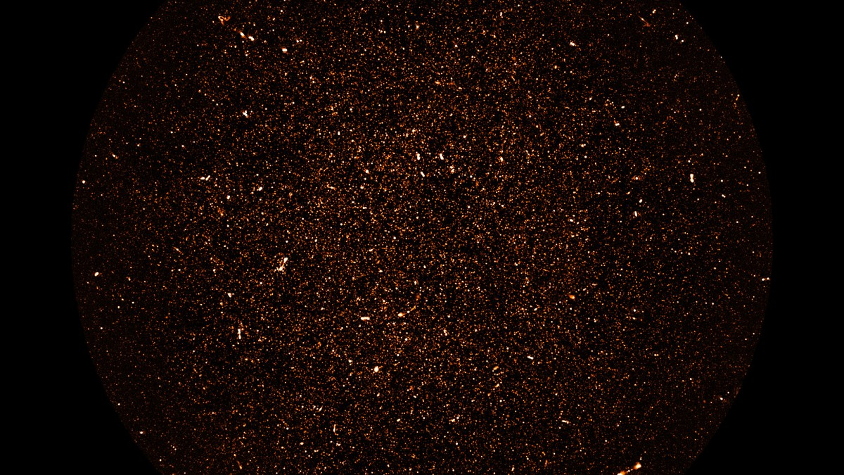Every bright spot in this new image is a distant galaxy