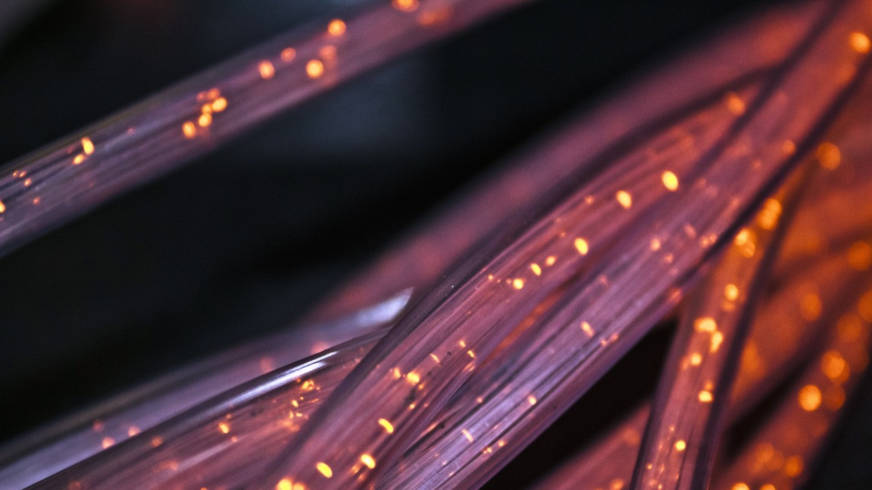 An image of optical fiber