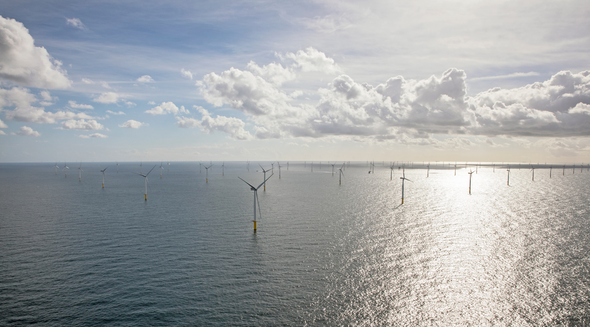 What the U S  Could Learn from the Dutch on Climate Change