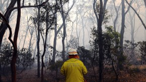 Image of firefighter walking through bushfire-affected forest