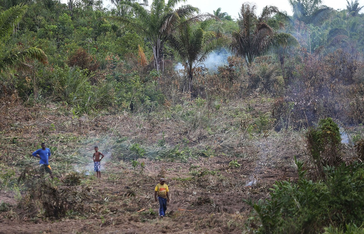 Photo of farmers in a deforested section of the Amazon basin