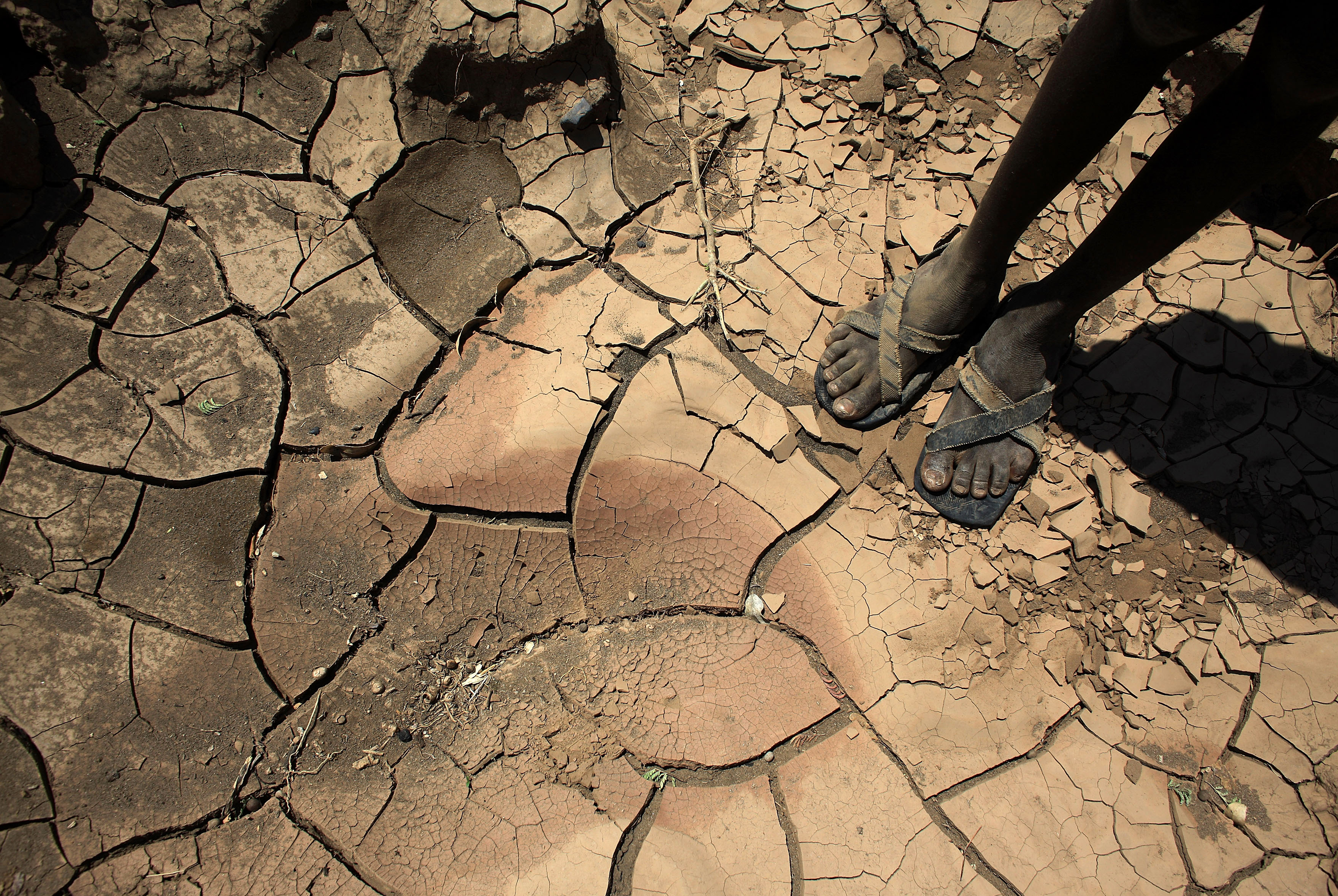 Climate change has already made poor countries poorer and rich countries richer