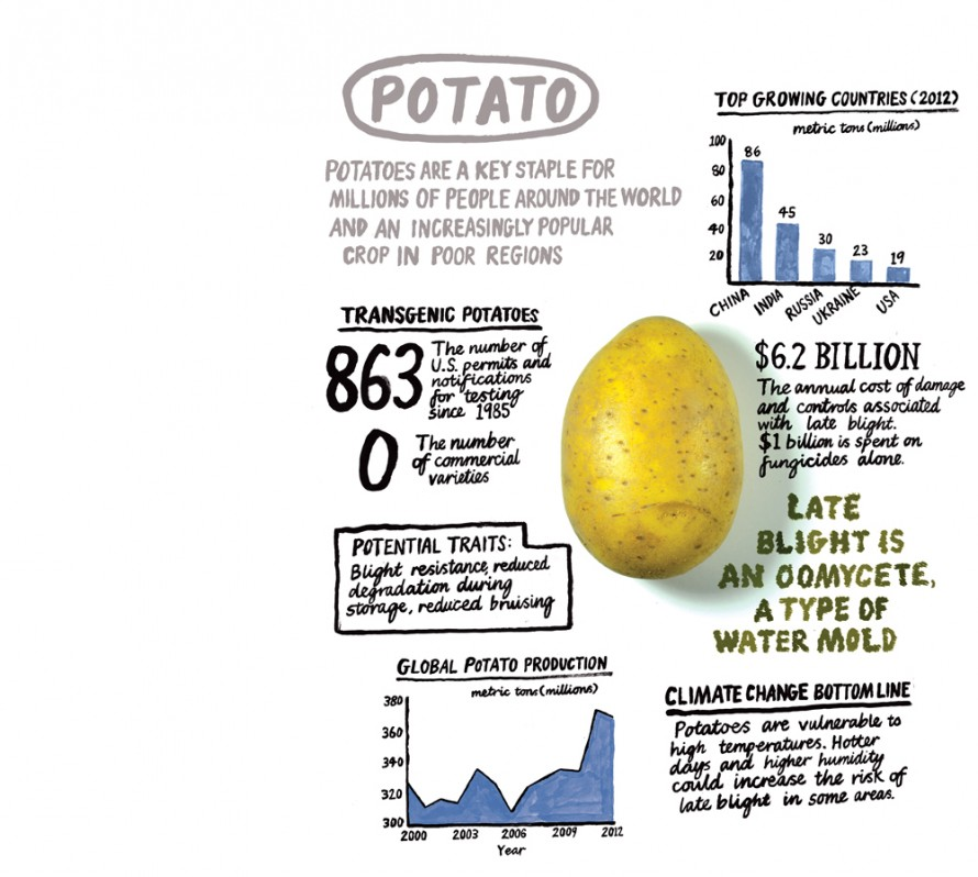 Why We Will Need Genetically Modified Foods - MIT Technology