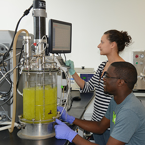 Greenlight Biosciences researchers