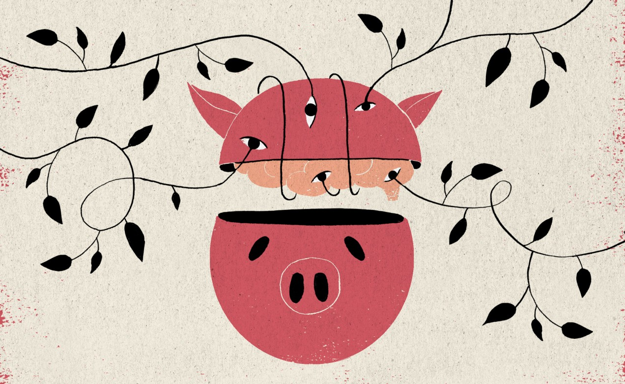 Researchers are keeping pig brains alive outside the body - MIT