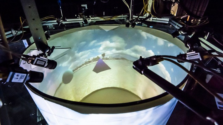 Inside a lab animal's VR rig