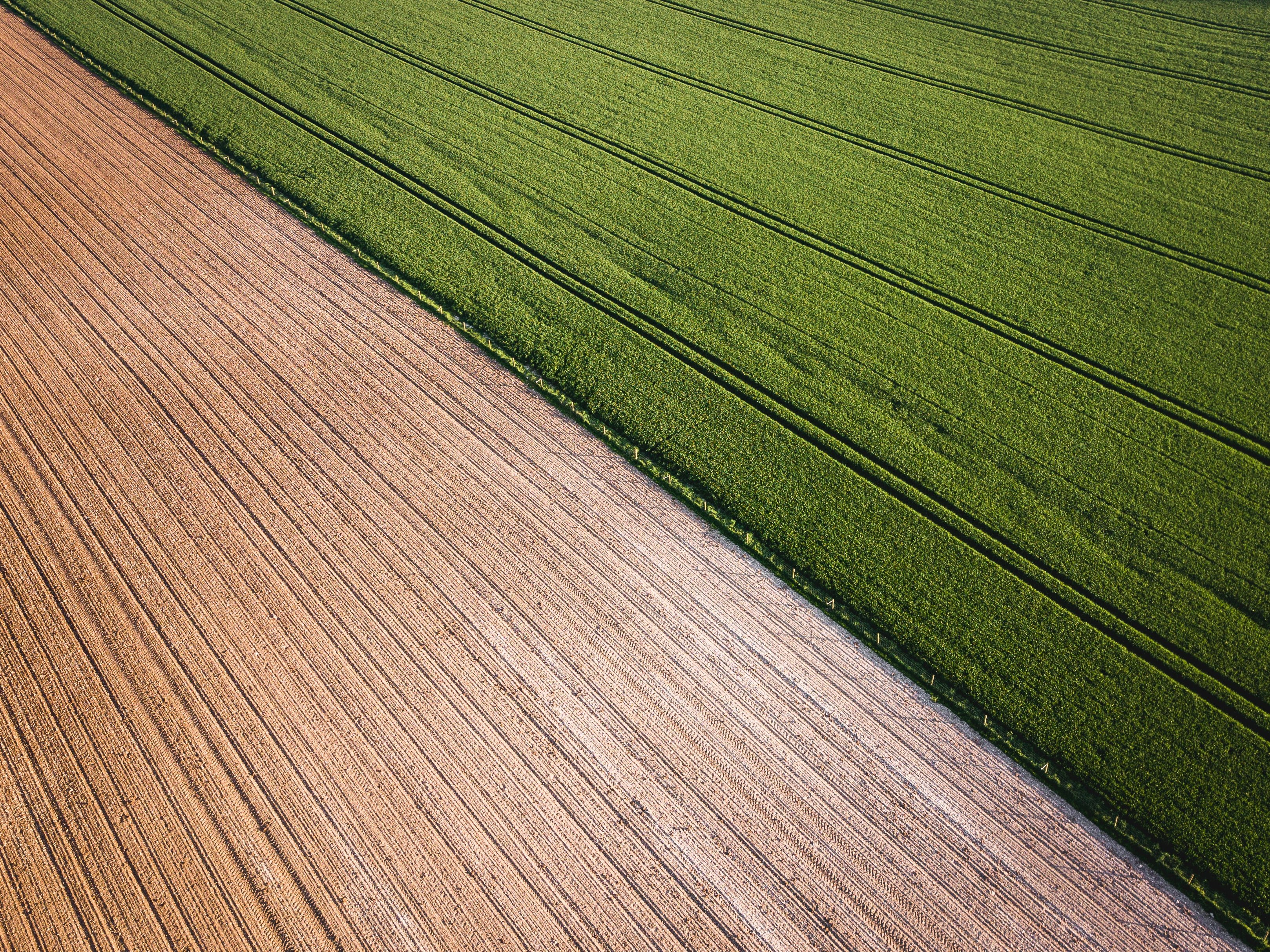 Sorry—organic farming is actually worse for climate change