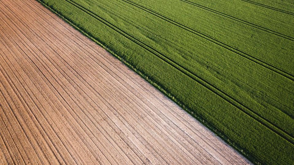 A farm.