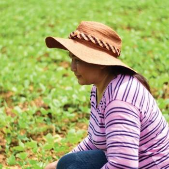 A farmer in Thailand