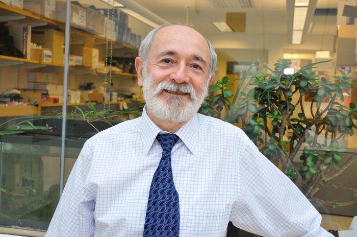 Photo of Boris Katz