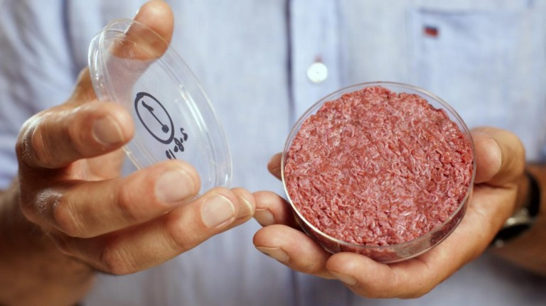 Lab-grown meat in a petri dish