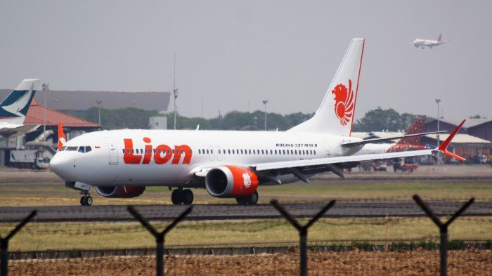 Lion Air 737 Max Grounded