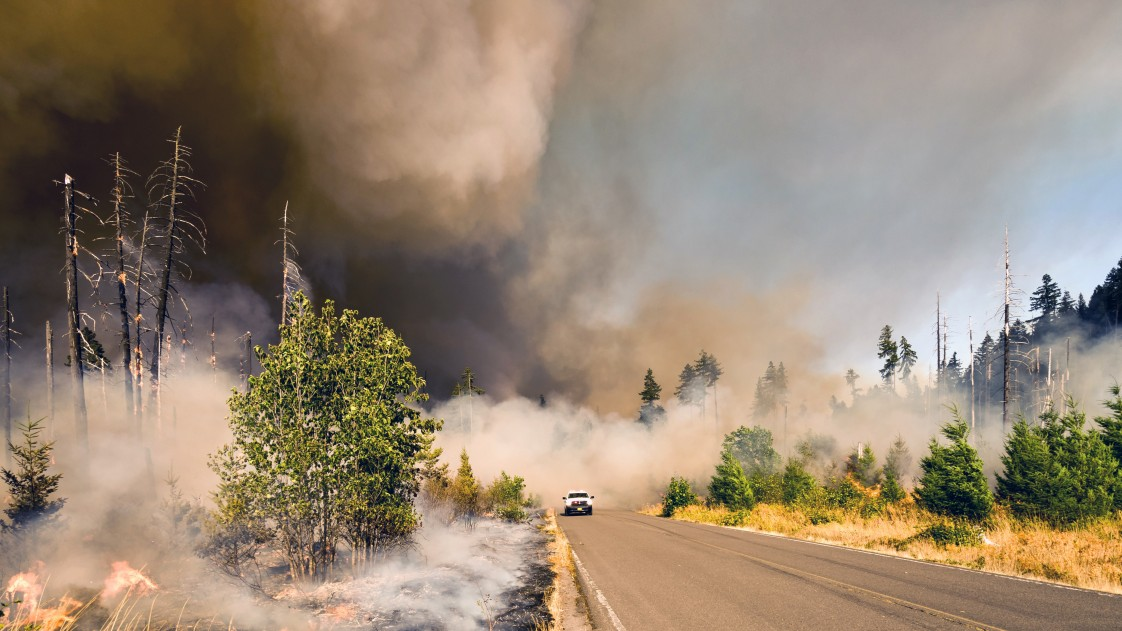 Wildfire at Big Fall Creek Road, Lowell.
