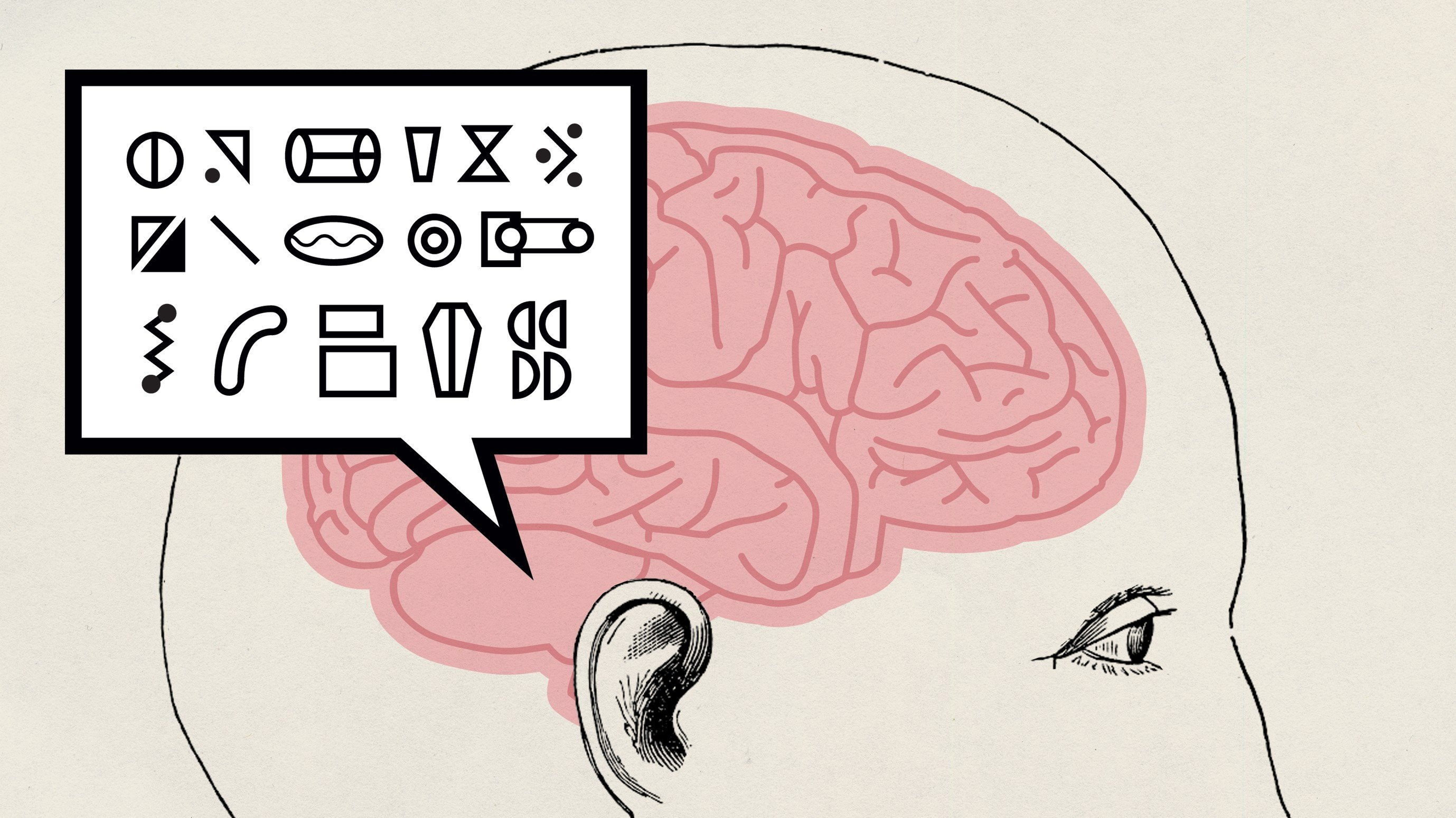 Here Are Some of the Codes the Brain Uses to Communicate with Itself