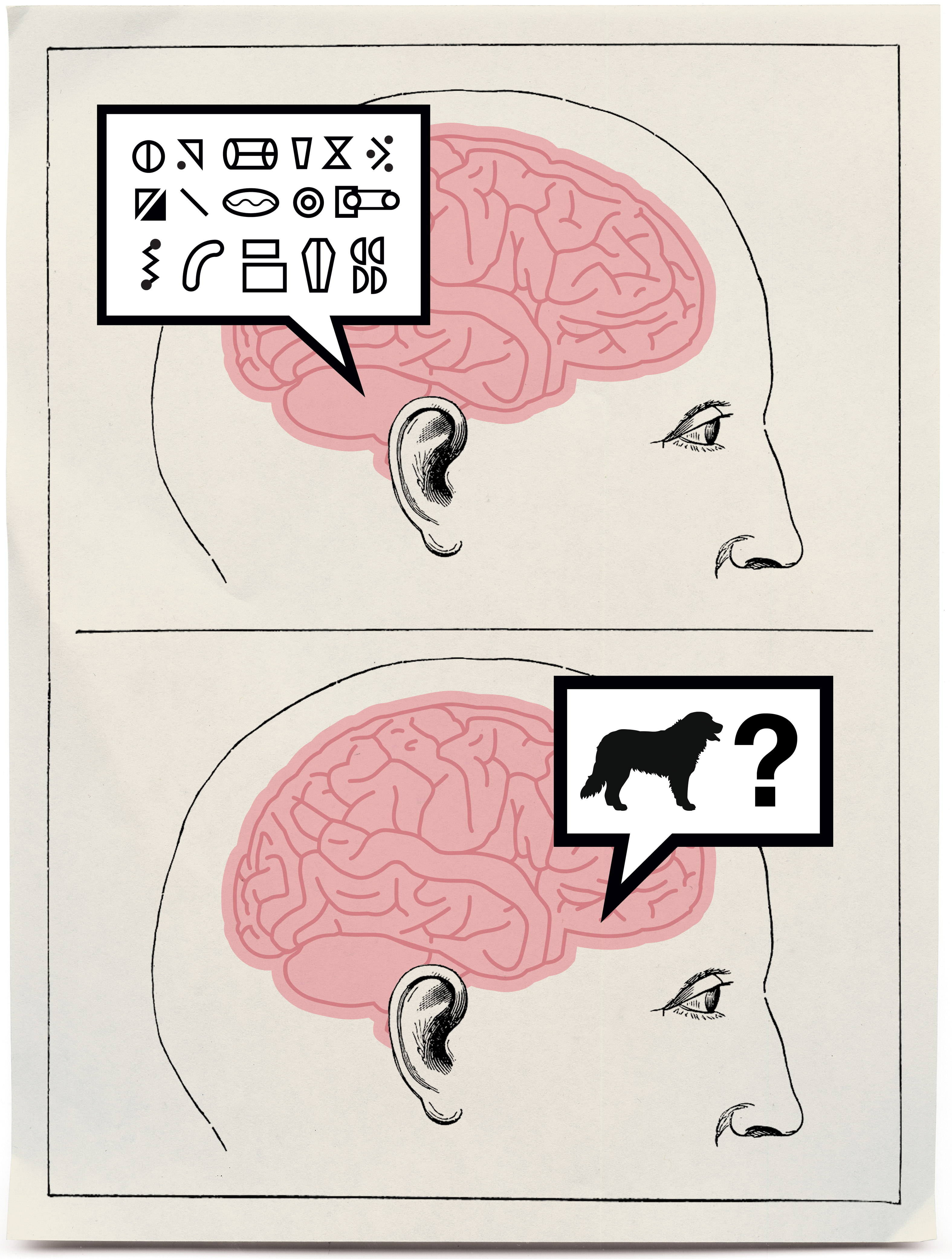 Cracking the Brain\'s Codes - MIT Technology Review