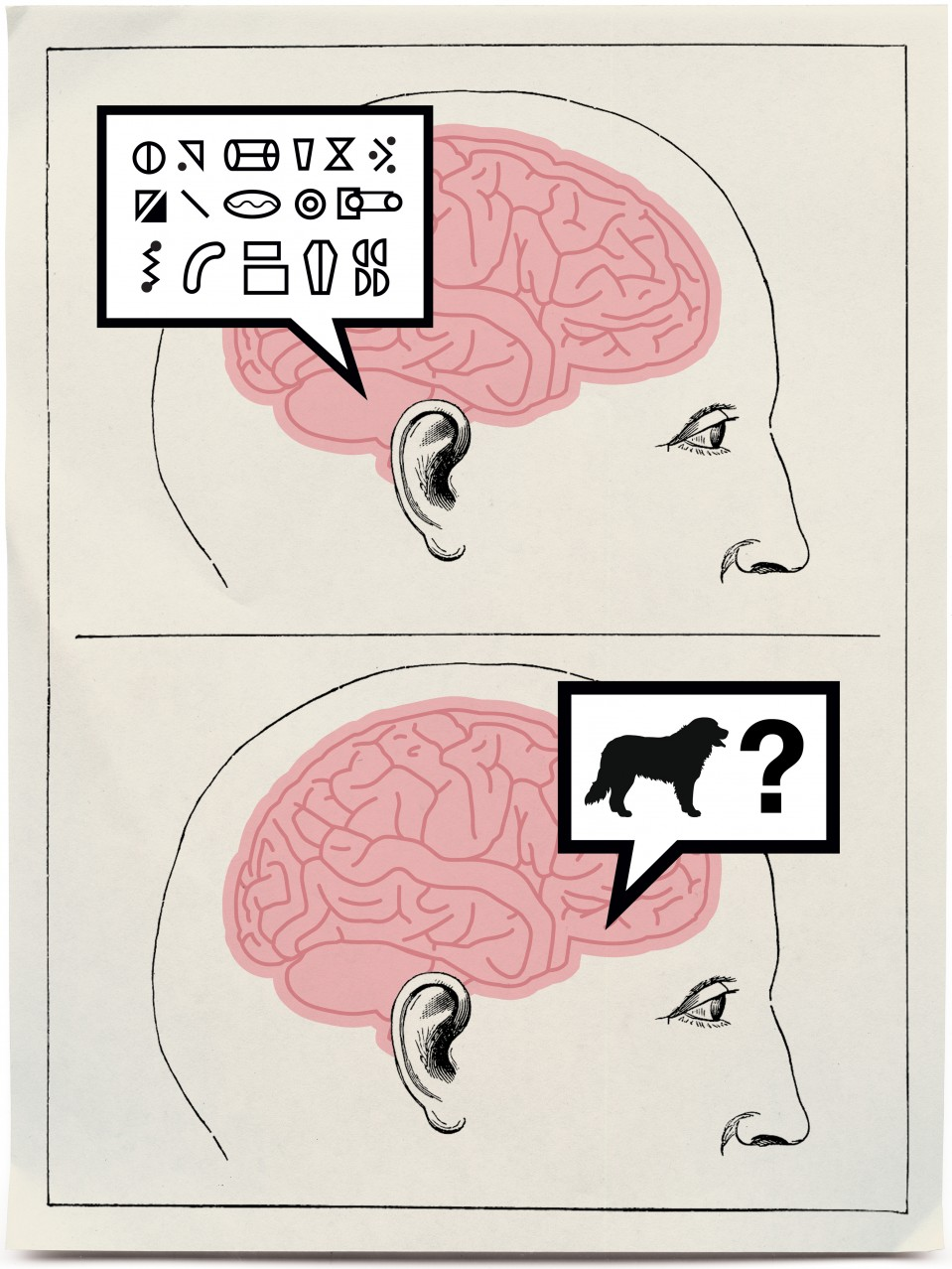 Cracking the Brain's Codes - MIT Technology Review