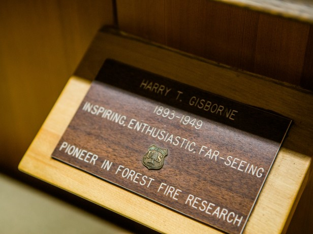 photo of Harry Gisborne's name plate