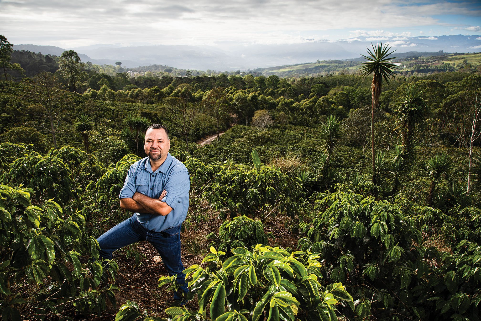 The accident that led to the discovery of climate-change-proof coffee