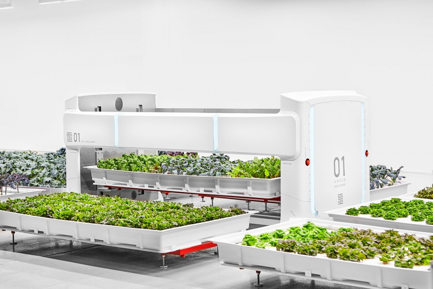 Photo of Iron Ox's indoor farm