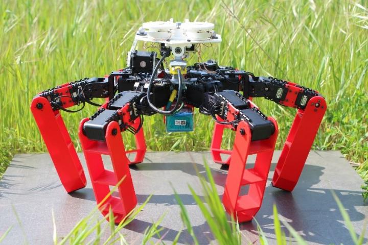 An insect-bot mimics desert ants by looking at the sky to navigate